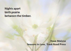 Porter Anderson, Writing on the Ether, Jane Friedman, author, publisher, agent, books, publishing, digital, ebooks, Dave Malone, Seasons in Love, poetry, Trask Road Press
