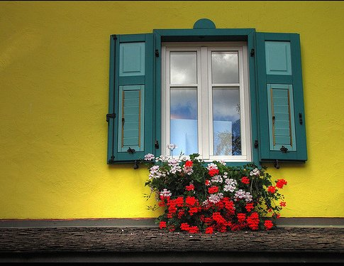 Photo by Andrea Costa / via Flickr