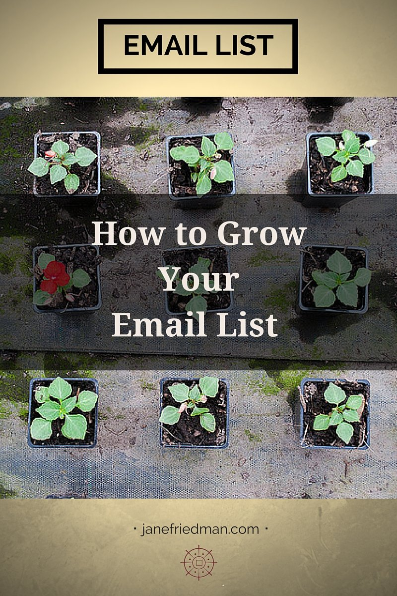 Kirsten Oliphant in her fourth post in a series on email discusses various ways to grow your email subscriber list.
