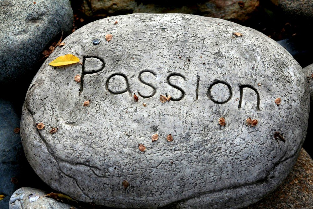 the advice to pursue your passion  what does  u0026quot passion u0026quot  even mean